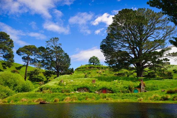 Auckland to Rotorua via Hobbiton