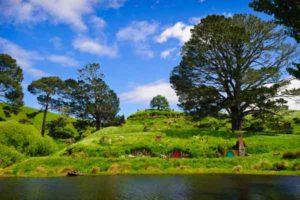 Hobbiton movie set on a auckland to hobbiton tour