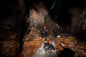 Black Water rafting at Waitomo caves Kiwi bird